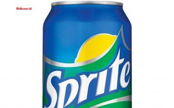 Cara Mencegah Kehamilan Dengan Minum Sprite
